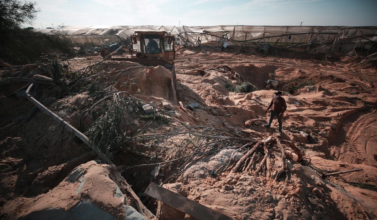 القصفُ على غزّة: التربة تموت أيضاً!