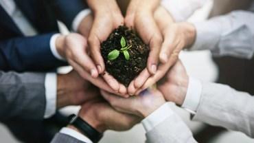 Sobre la Responsabilidad Social Corporativa