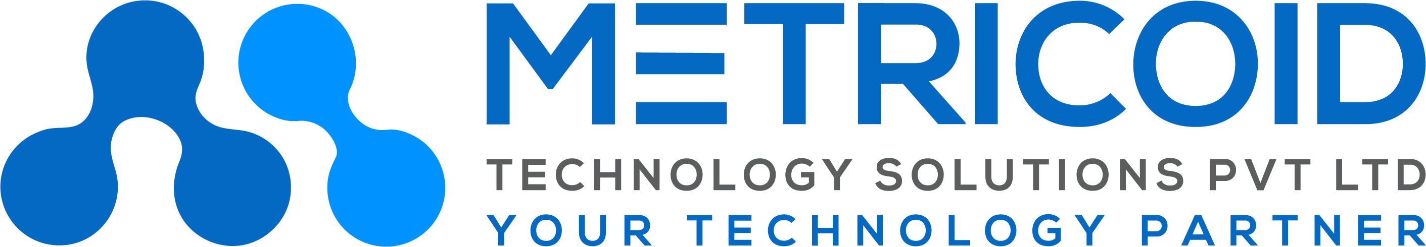 Metricoid – IT Services | Digital Transformation | Consulting