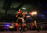 The Shock Fight 2018 (14)