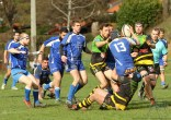 US Jarrrie Champ Rugby - Chartreuse RC (79)