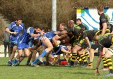 US Jarrrie Champ Rugby - Chartreuse RC (91)