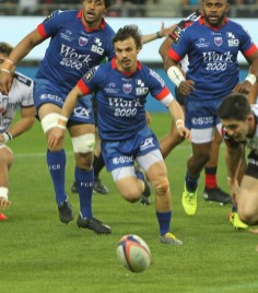 TOP14 FC Grenoble - RC Toulon (60)