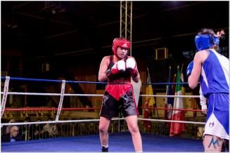 Gala boxe international_amateurs_1-2105
