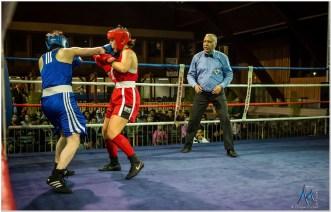 Gala boxe international_amateurs_4-2477