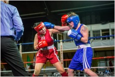 Gala boxe international_amateurs_4-2493