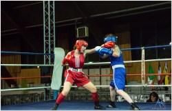 Gala boxe international_amateurs_4-2536