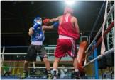 Gala boxe international_amateurs_7-2916