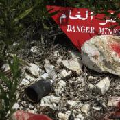 Minister's bid to ban cluster bombs