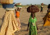 An international Darfur war crimes arrest warrant has been issued against Sudan's president.