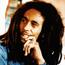 Rights row mars Marley movies