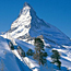 Teen killed in 160ft Mont Blanc fall