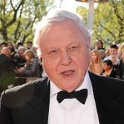 Sir David Attenborough will be appearing with Goldie and Rory Bremner