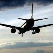Medical services were called after several passengers fainted during the flight