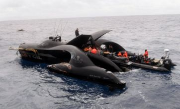 Anti-whaling superboat the Ady Gil 'sliced in half by Japanese ship'