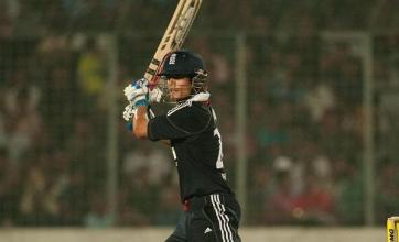 Cook dominates England reply