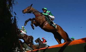 Grand National 2010 sweepstake kit: Printable cut-out guide with full odds
