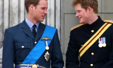 Princes to begin joint SA tour
