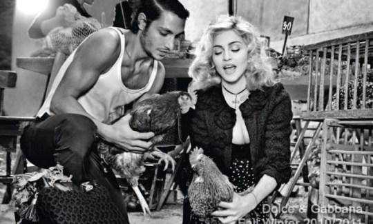 Madonna grabs hold of a chicken (Photo: Dolce and Gabbana)