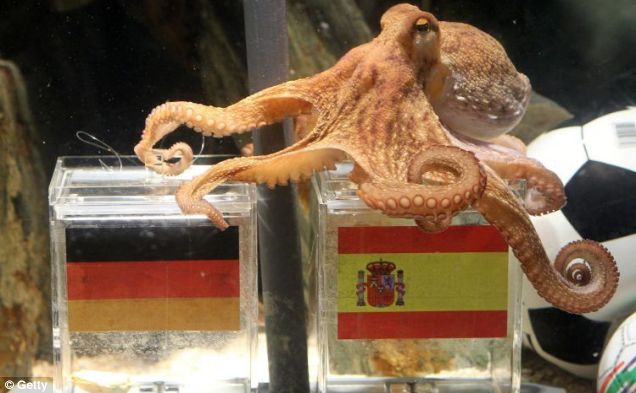 Paul the psychic octopus correctly predicted a Spanish victory over Germany in the World Cup semi-final