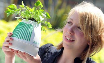Intelligent plant pot spells end of poorly shrubs