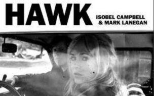 Hawk album review