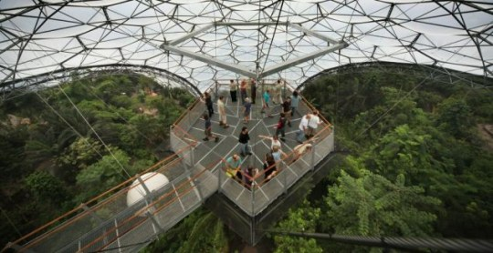 The new platform at the Eden Project overlooks the world's biggest indoor rainforest (Getty)