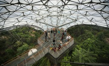 Rainforest Lookout: 55ft tall viewing platform opens at Eden Project