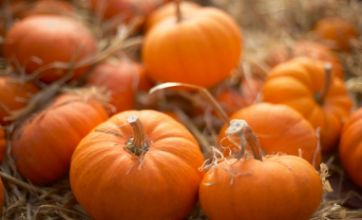 Halloween – 5 unexpected uses for pumpkin guts