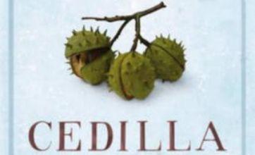Cedilla is a crushing bore of a read