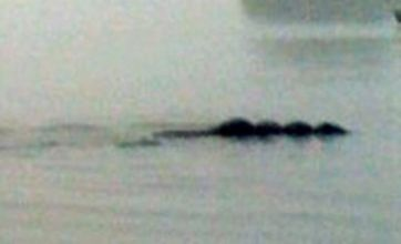 Is this photo evidence of Lake District monster 'Bownessie'?