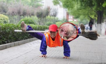 Pig with two snouts vs martial arts road sweeper: Freak Out