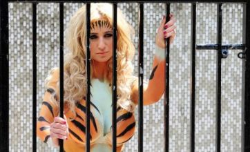 Chantelle Houghton dresses up in a tiger outfit for Peta protest