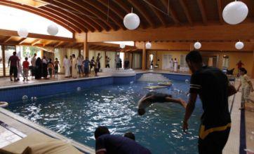 Libya rebels frolic in pool at home of Col Gaddafi's daughter in Tripoli