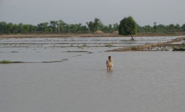 Millions flee new floods as Pakistan fails to cope with diseases