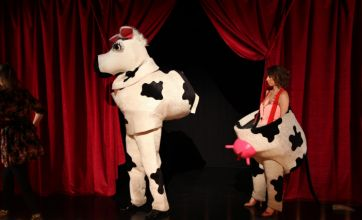 Strictly Come Dancing's Alex Jones in cow costume: Caption competition