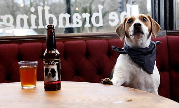 Pub sells special beer for dogs