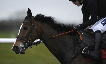 Kauto Star given all-clear to bid for third Cheltenham Gold Cup victory