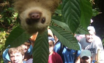 Cute alert: Sloth gatecrashes photo to say 'cheese' with jungle volunteers
