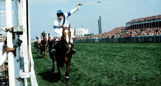 Grand National Aintree Horse Racing Bob Champion