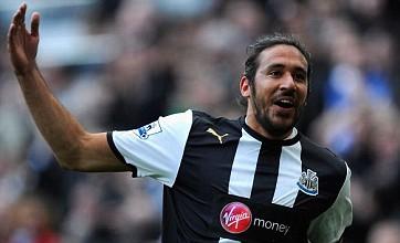 Newcastle must maintain focus for final push, says Jonas Gutierrez