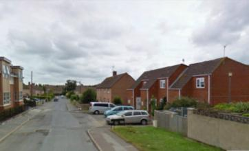 Boy, 2, in hospital after being mauled by dogs in back garden