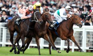 Black Caviar wins at Royal Ascot despite Luke Nolen's 'brain failure'