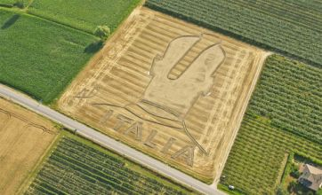 Mario Balotelli immortalised by artist with wheat field 'crop circle' in Italy