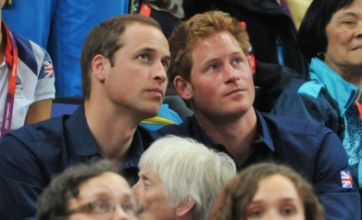 Princes William and Harry back Diana's favourite HIV charity