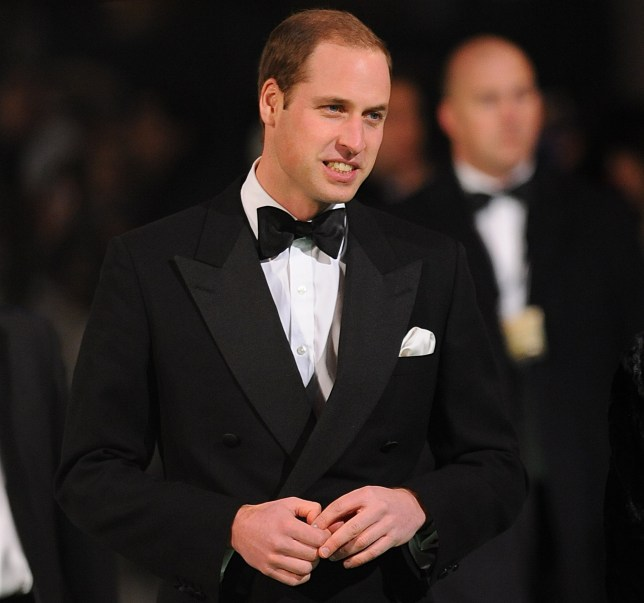 Prince William represented the royals at the premiere of The Hobbit: An Unexpected Journey (Picture: PA)