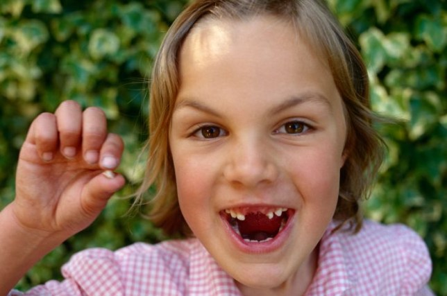 Children may want to think twice about giving their teeth to the tooth fairy (Picture: Alamy(