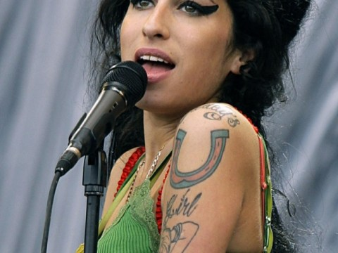 Amy Winehouse 30th birthday to be marked by month of celebrations including charity sky dive by mother Janis