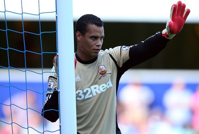 Michel Vorm has been one of Swansea's best players since they were promoted to the Premier League (Picture: Getty)