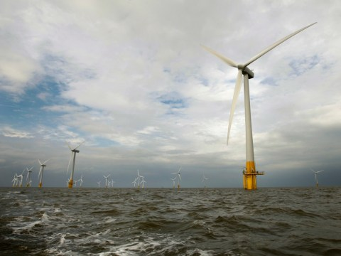 Wind farm mistakes 'will lumber consumers with higher electricity bills for two decades'